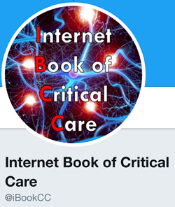 Announcement: Launching the Internet Book of Critical Care