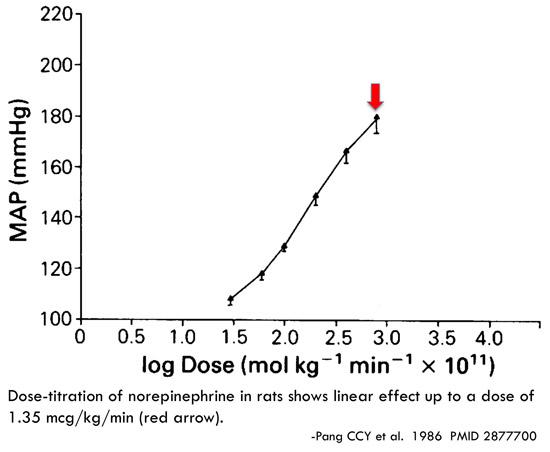 PulmCrit- High dose vasopressors: Never surrender