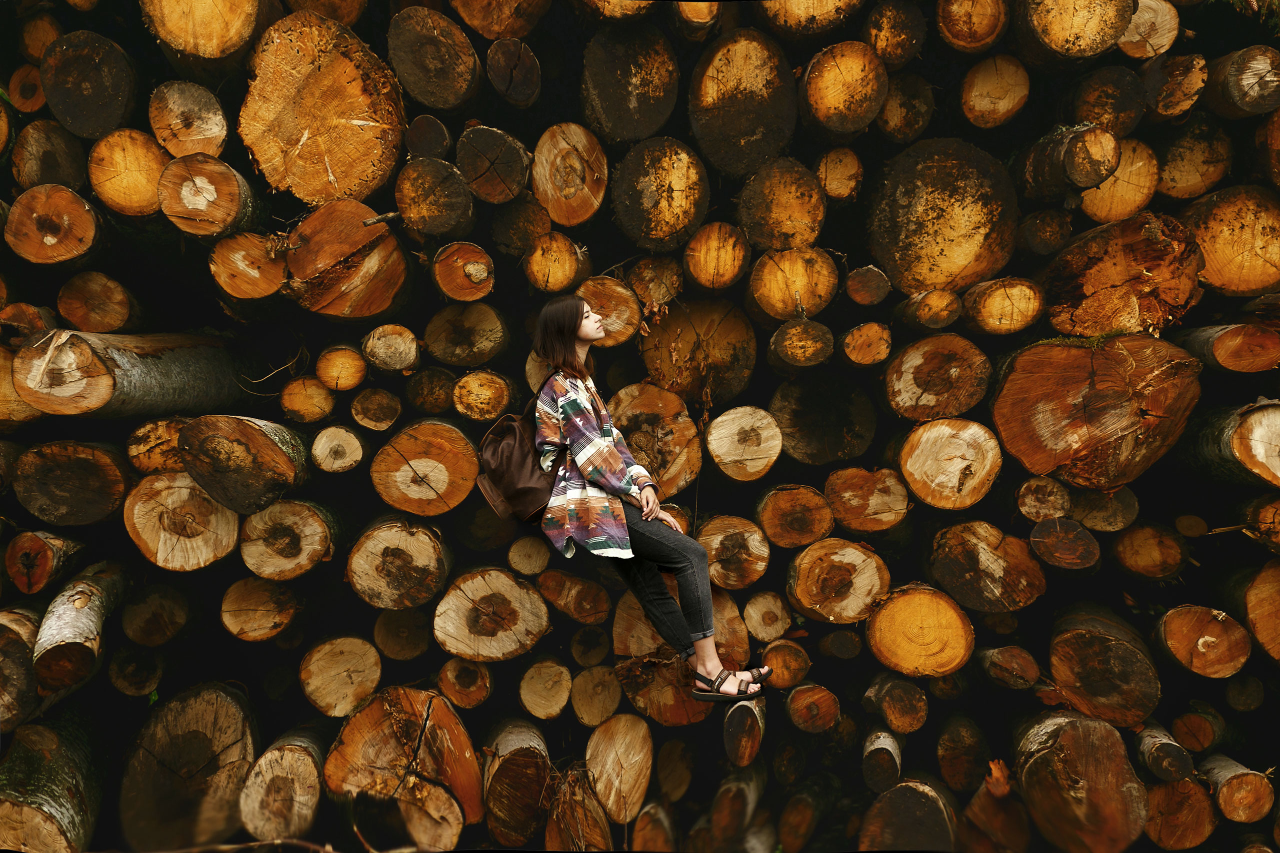 woman sitting on hardwood logs