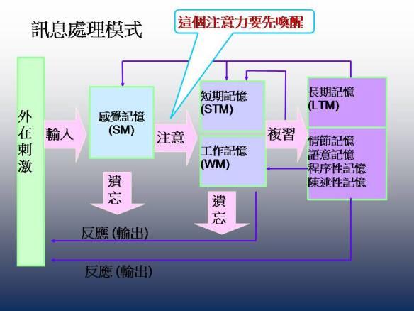 information process figure_06