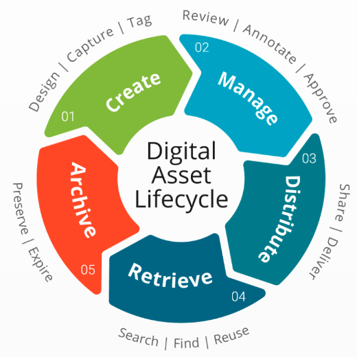 Digital Asset Management Lifecycle