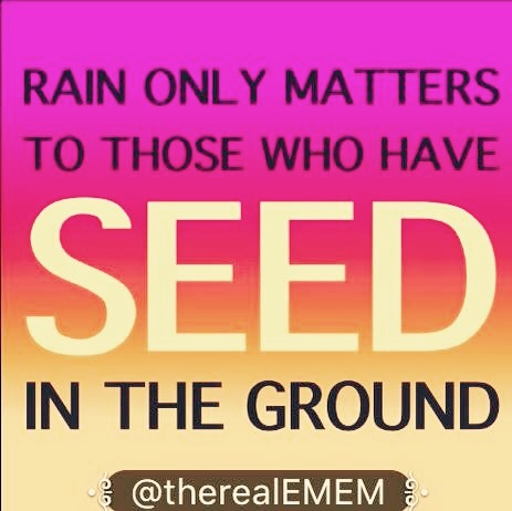 Rain only matters if you have seed