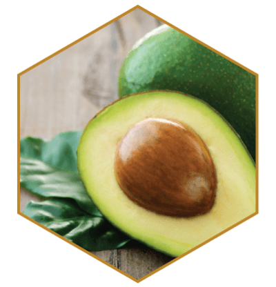 Avocado Oil Natural Hair Ingredient