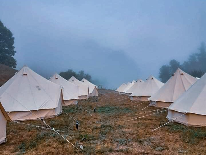 Looking down the middle two rows of glamping belle tents in a foggy paddock the morning of the wedding.