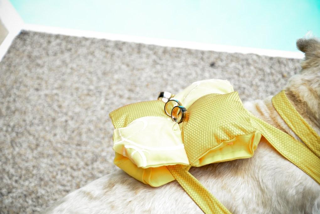 WEDDING DOG PHOTOS-2