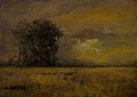 Sandee Burman - Golden Skies, oil on board