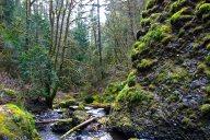 Vince Ferguson - McChord Creek - Digital Image