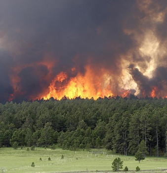 Correlation between Forest Fires and Climate Change