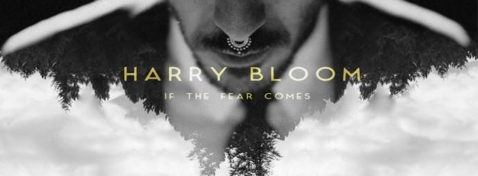 harry bloom