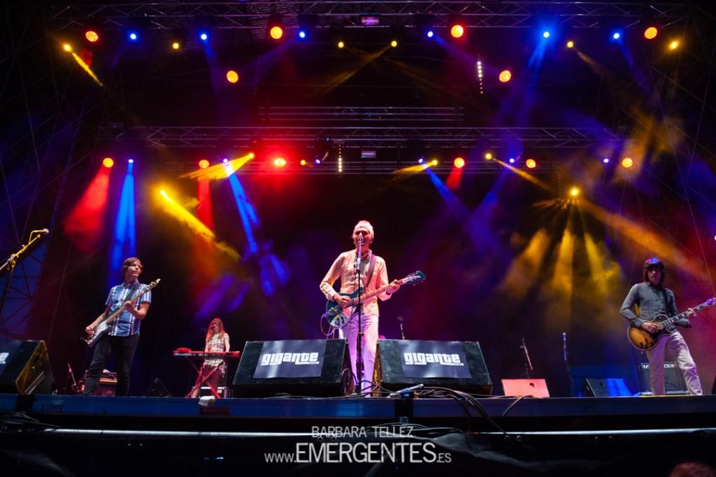 Cooper Festival Gigante