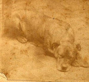 The only known photograph of Sallie, courtesy of the Pennsylvania Historical and Museum Commission