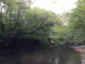 The North Anna River