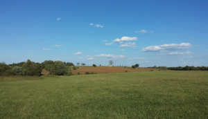 Fleetwood Hill at Brandy Station
