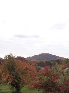 Thoroughfare Mountain from Bethsaida Church