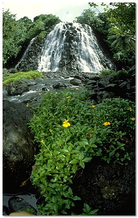 Pohnpei waterfall