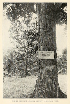 Johnston Tree with Sign-sm