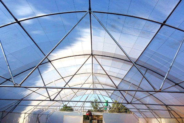200um plastic greenhouse tunnel, emerging farmers, single-span