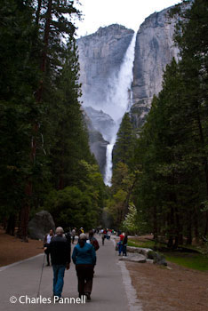 he west trail to Yosemite Falls starts out easy, but has a very steep section near the end