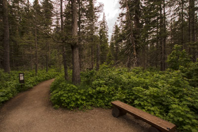 Trailhead for Running Eagle Falls Nature Trail