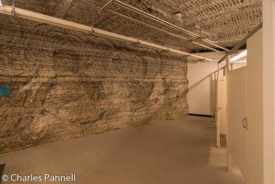 Stratified salt walls in the bathroom