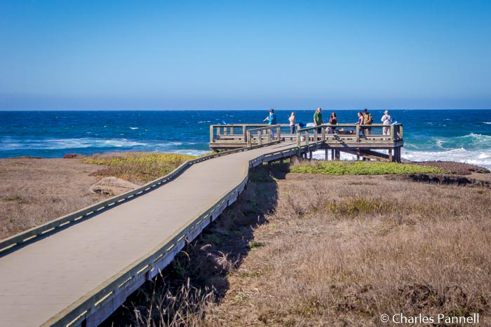 Located three miles north of Fort Bragg, MacKerricher State Park  occupies a prime piece of California real estate. The habitat and scenery are diverse, and you just can't beat the beach, bluff and headland views... Read more