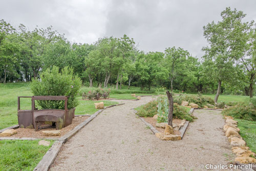 The arboretum behind the office near the park entrance