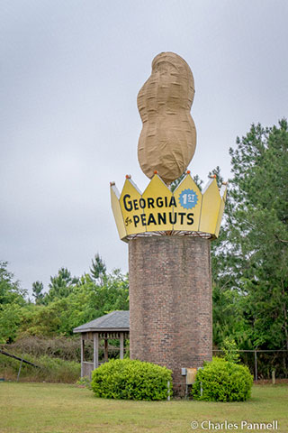 World's Largest Peanut – Ashburn, GA