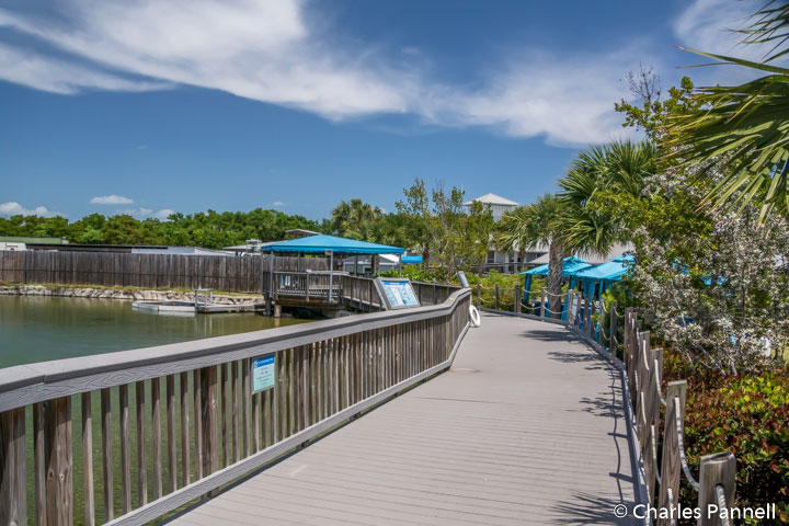 Accessible boardwalk around the game fish lagoon Loop at the Florida Oceanographic Coastal Center