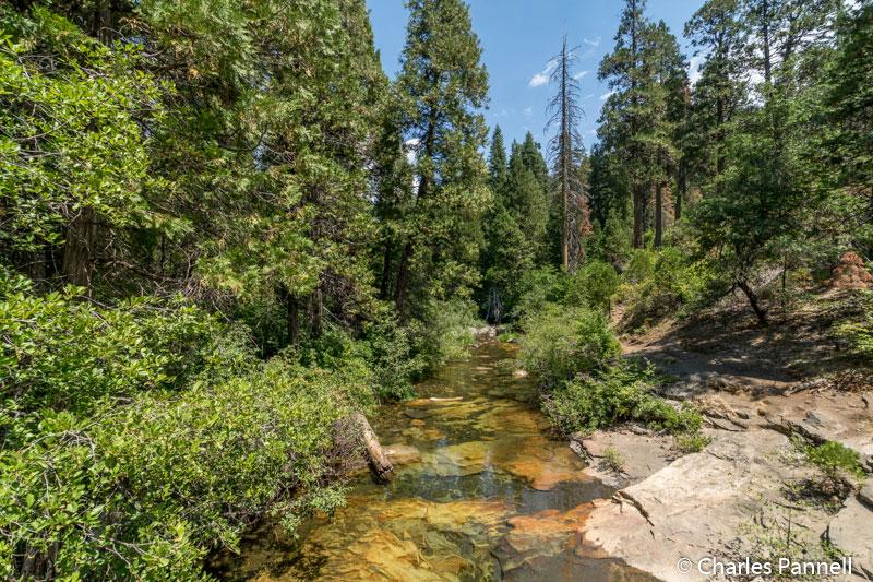 Beaver Creek at Calaveras Big Trees State Park
