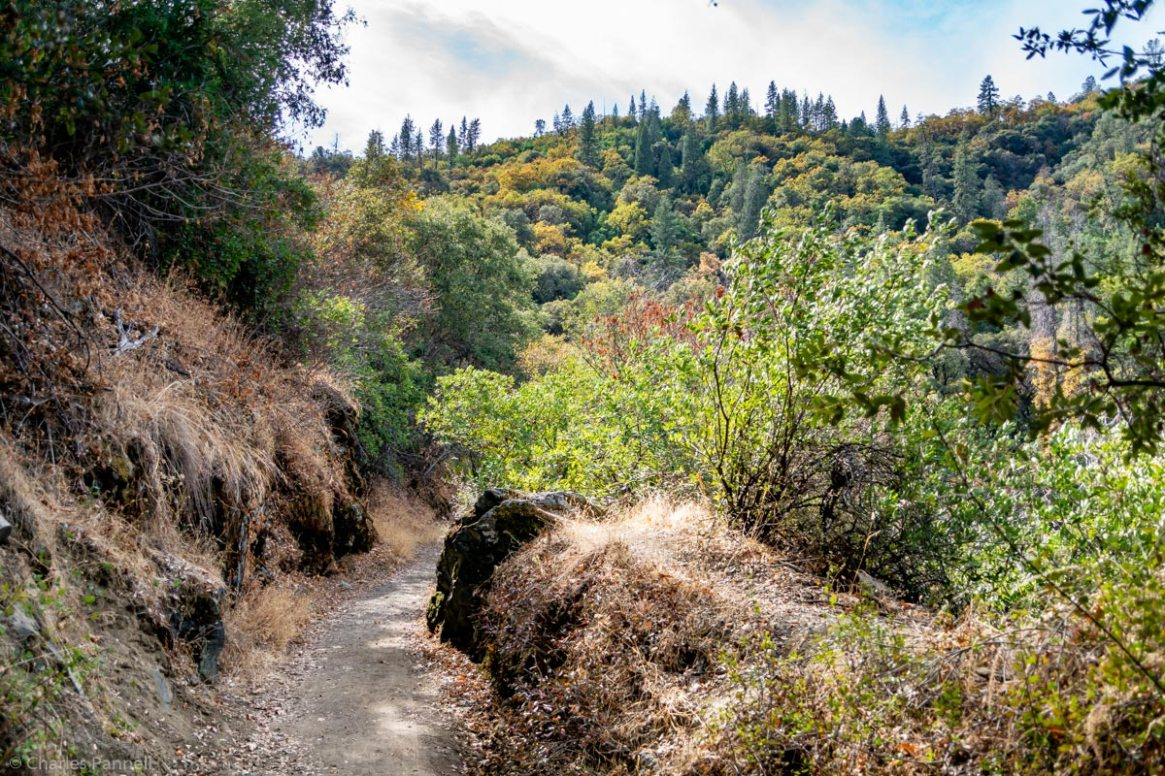 Explore the Wheelchair-Accessible Independence Trail