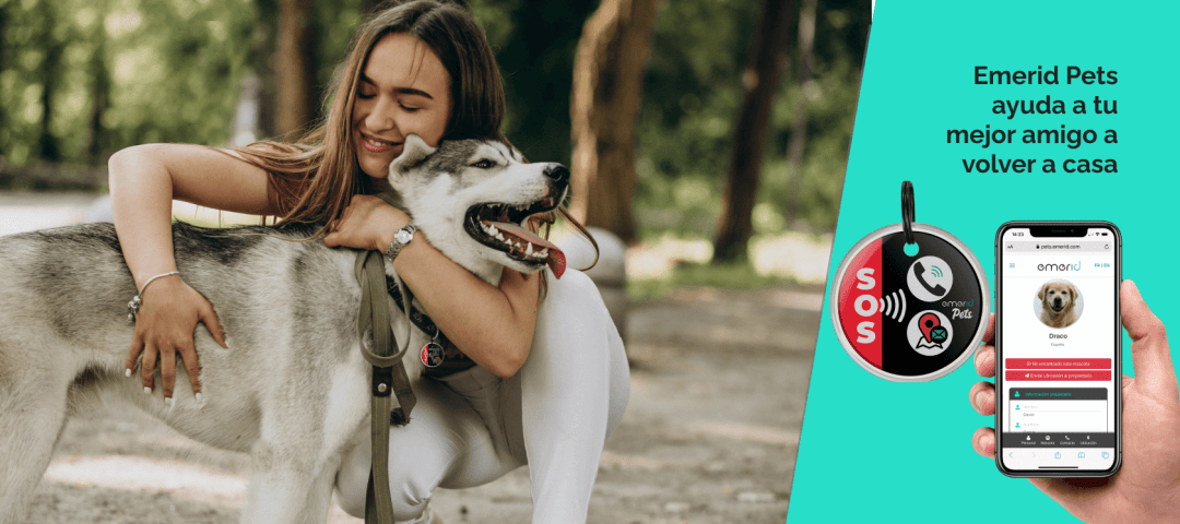 Portada Emerid Pets identificación contactless para tu mascota