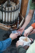 Eager to try the first pressing of fresh apple cider.