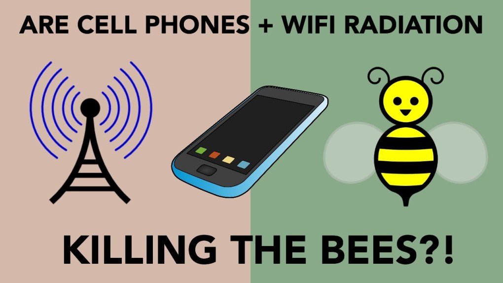wifi-Emf-protection-radiation-anti-bees