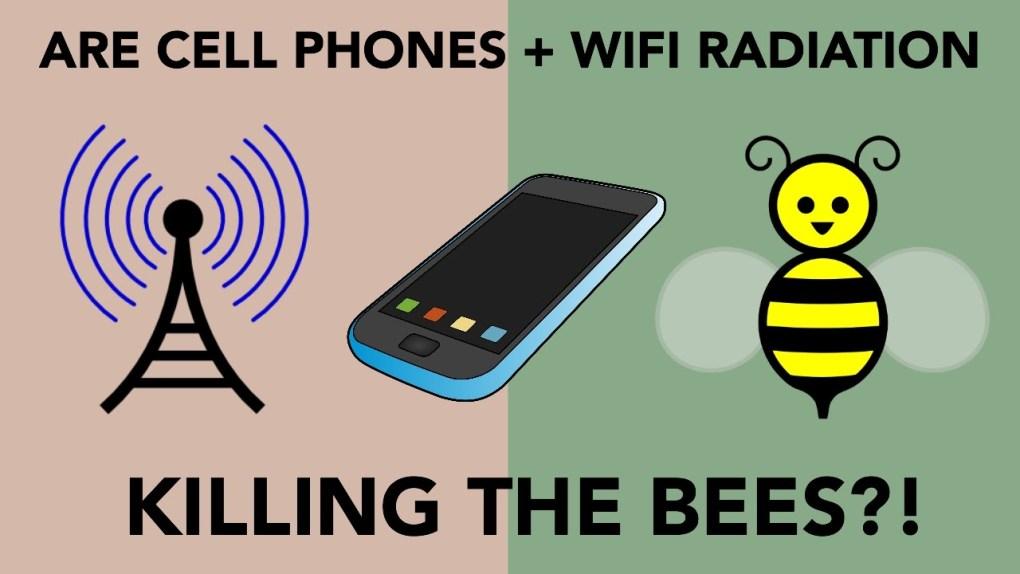 wifi-Emf-protection-radiation-anti-bees