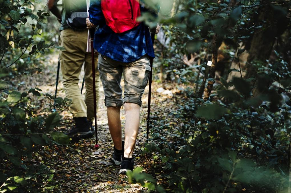 nature walk tips