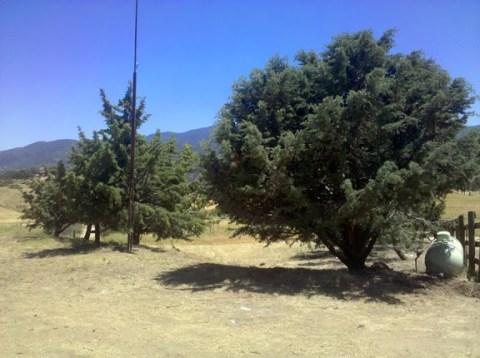 Tehachapi004e