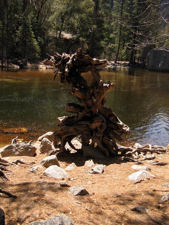 Yosemite025