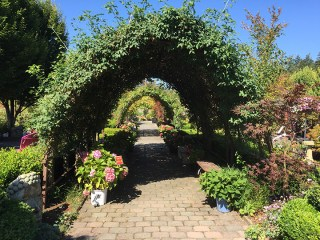 Bayview Gardens