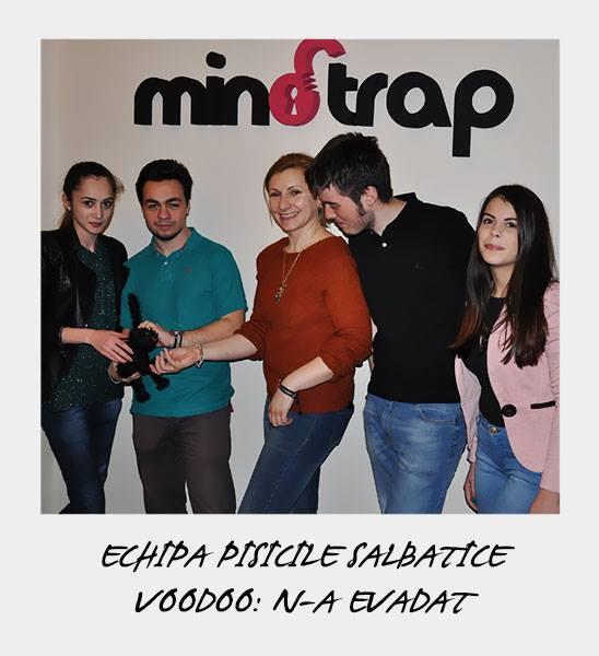 Echipa Pisicute Salbatice a fost formata din: Adriana, Malaezu, Iulia, Alin si Bianca