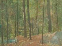 Emil Carlsen : Pine woods, ca.1915.