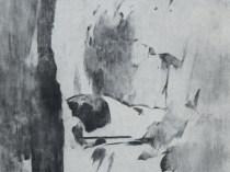 Emil Carlsen : Campbell Falls, 1928.