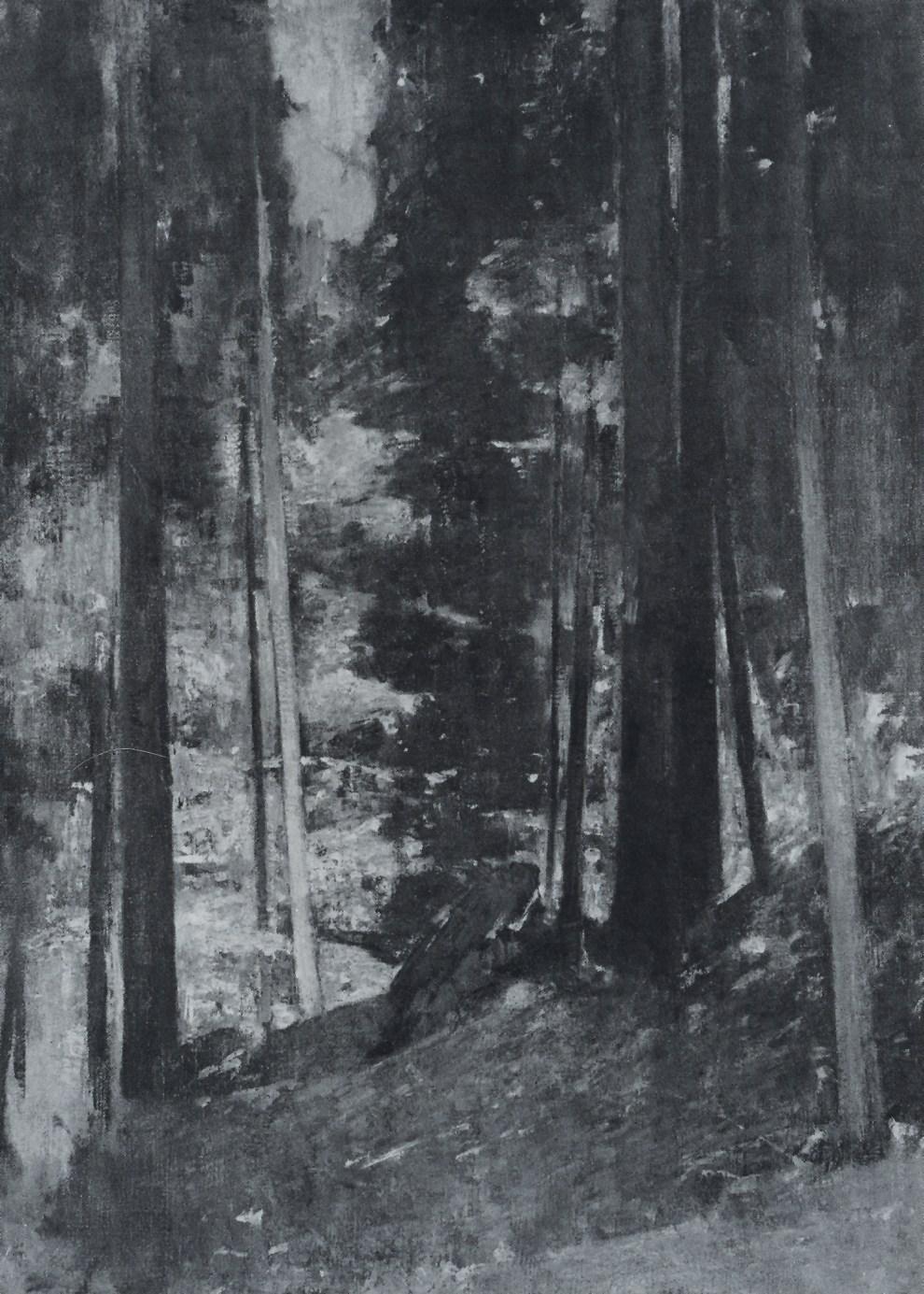 Emil Carlsen : Wood interior, 1931.
