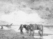 Emil Carlsen Seaweed Gatherers, 1881 (unlocated)
