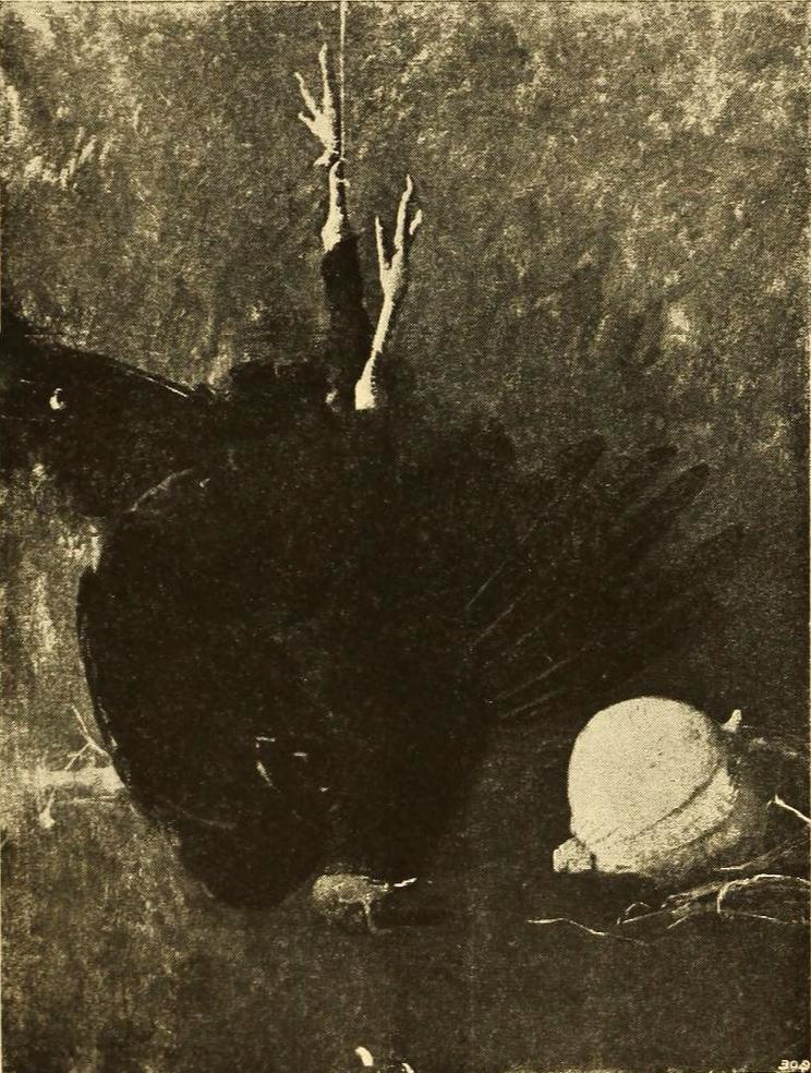 Emil Carlsen The Black Turkey, ca.1894