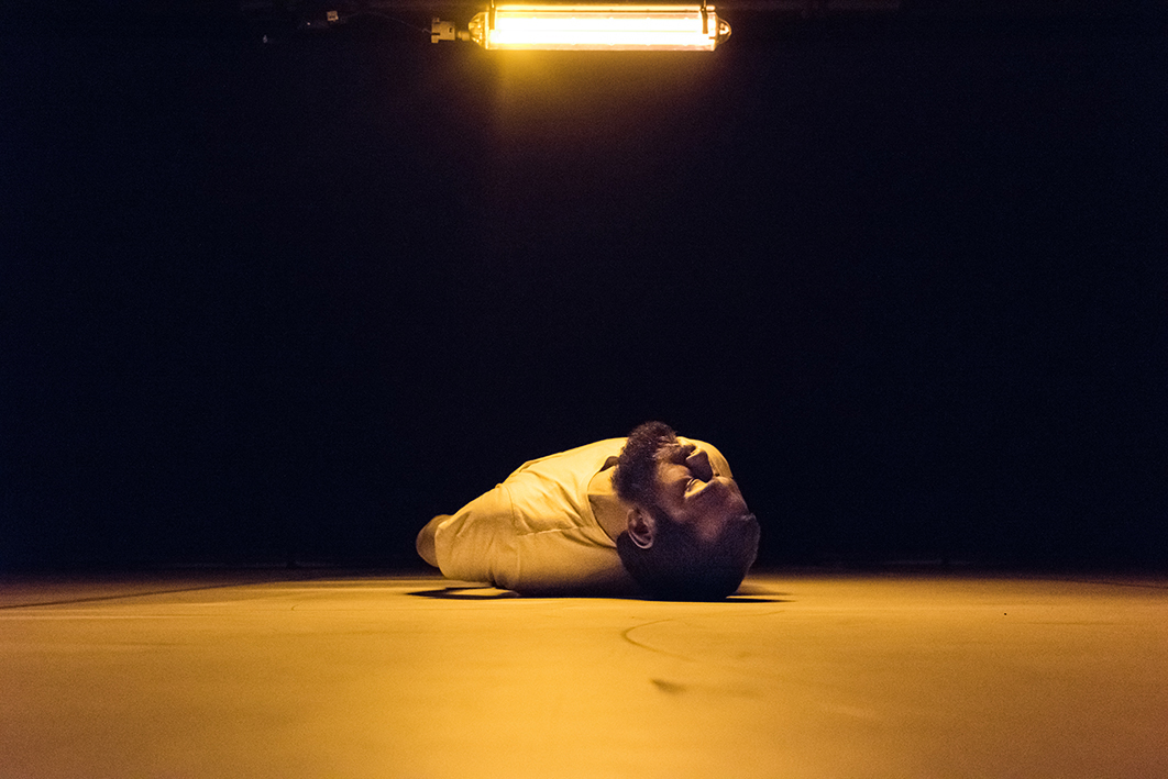 Emile laying on the floor, undulating under a very yellow lamp
