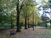 An autumnal University Park