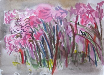 Nerene Lilies 2, watercolor on paper, 8 by 12 in. Emilia Kallock 2011