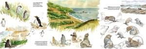 Page carnet de voyage NZ- Otago