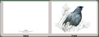 kokako. new zealand, , bird, painting, watercolor, New Zealand, native, art, print, poster, feather