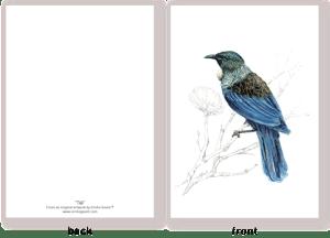 new zealand, illustration , bird , native , watercolor , ink , mixed media